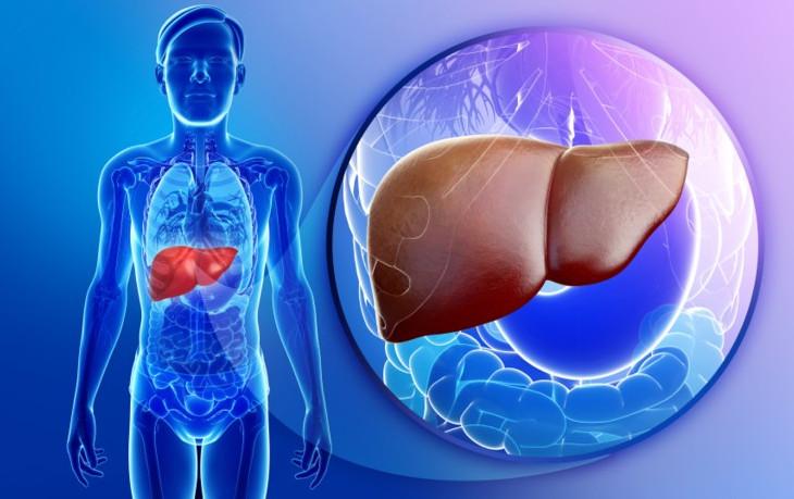 علاج التهاب الكبد بي بالثوم